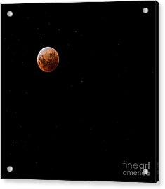 Blood Moon Acrylic Print