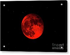 Blood Red Wolf Supermoon Eclipse 873a Acrylic Print