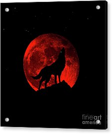 Blood Red Wolf Supermoon Eclipse 873l Acrylic Print