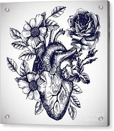 Blooming Anatomical Human Heart. Vector Acrylic Print