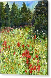 Blooming Field Acrylic Print