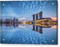 Blu Duo Acrylic Print by (c) Jonathan Chiang/scintt