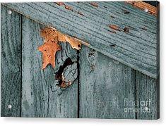 Blue Fence Acrylic Print