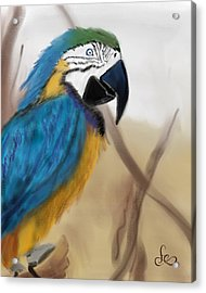 Acrylic Print featuring the digital art Blue Parrot by Fe Jones