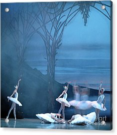 Acrylic Print featuring the photograph Blue Swans by PJ Boylan
