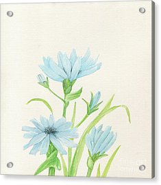 Blue Wildflowers Watercolor Acrylic Print
