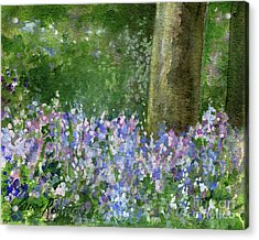 Bluebells Under The Trees Acrylic Print