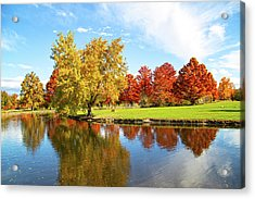 Acrylic Print featuring the photograph Boise Fall Foliage by Dart and Suze Humeston