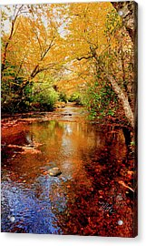 Boone Fork Stream Acrylic Print