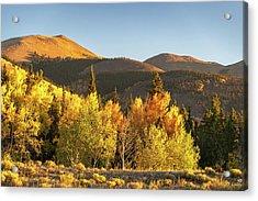 Boreas Mountain Acrylic Print