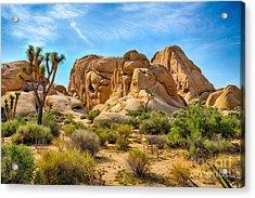 Boulders And Joshua Trees In Joshua Acrylic Print