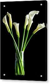 Bouquet Of Calla Lilies Acrylic Print