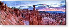 Bryce Canyon Np - Helluva Place To Lose A Cow Acrylic Print