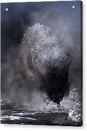 Acrylic Print featuring the digital art Buffalo Charging Through Snow by Daniel Eskridge