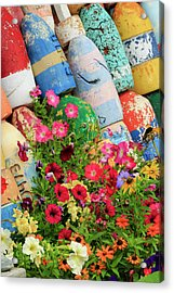 Buoys And Petunia Flowers, Rockport Acrylic Print by Adam Jones