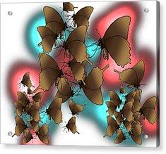 Butterfly Patterns 11 Acrylic Print