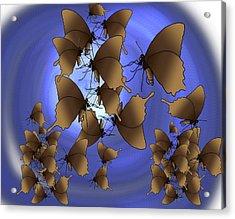 Butterfly Patterns 13 Acrylic Print