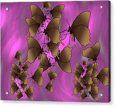 Butterfly Patterns 17 Acrylic Print