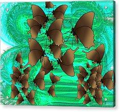 Butterfly Patterns 3 Acrylic Print