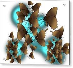 Butterfly Patterns 9 Acrylic Print