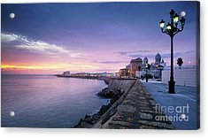 Acrylic Print featuring the photograph Cadiz Skyline And Cathedral by Pablo Avanzini