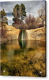 Calf Creek Pool Acrylic Print by Leland D Howard