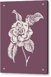 Camelia Purple Flower Acrylic Print