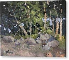 Campsite Acrylic Print