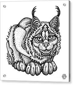 Canada Lynx Acrylic Print