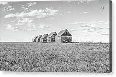 Canadian Prairies Acrylic Print