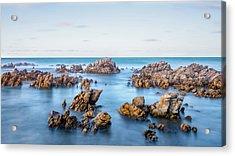 Cape Of Needles Acrylic Print