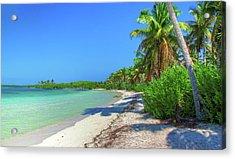 Caribbean Palm Beach Acrylic Print