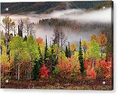 Caribou Canyon Acrylic Print by Leland D Howard