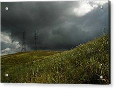 Caroni Grasslands Acrylic Print