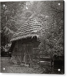 Carpathians Remote. Lviv, 2011. Acrylic Print