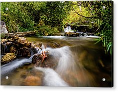 Acrylic Print featuring the photograph Cascades On The Provo Deer Creek by TL Mair