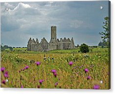 Acrylic Print featuring the photograph Castle In The Wildflowers by Mark Duehmig