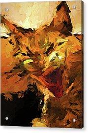 Cat Cathartic Scream Acrylic Print