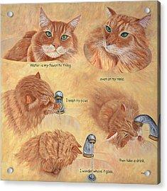 Cat Splash Acrylic Print