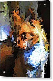 Cat With The Turned Head Acrylic Print
