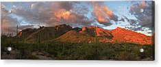 Catalina Mountains, Arizona Acrylic Print