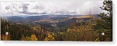 Cedar Mountain Top  Acrylic Print