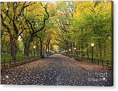 Central Park. Image Of  The Mall Area Acrylic Print