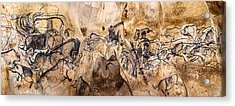 Chauvet Lions And Rhinos Acrylic Print