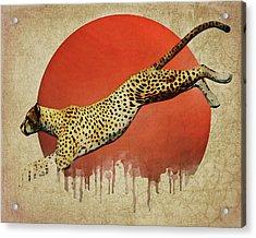Cheetah On The Run Acrylic Print