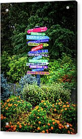Acrylic Print featuring the photograph Choices - Finger Lakes, New York by Lynn Bauer