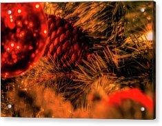 Acrylic Print featuring the photograph Christmas Evergreen by Allin Sorenson