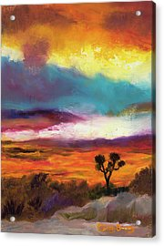 Cindy Beuoy - Arizona Sunset Acrylic Print