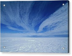 Cirrus Clouds Above Icy Plateau Acrylic Print by Grant Dixon/ Hedgehog House/ Minden Pictures