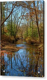 Acrylic Print featuring the photograph Clear Path by Cindy Lark Hartman